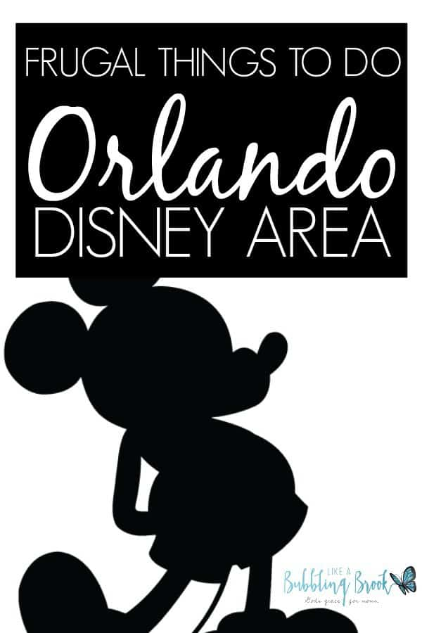 There are lots of things to do in Orlando with kids, and it doesn't have to cost a small fortune. Here are a few ideas the family will love!