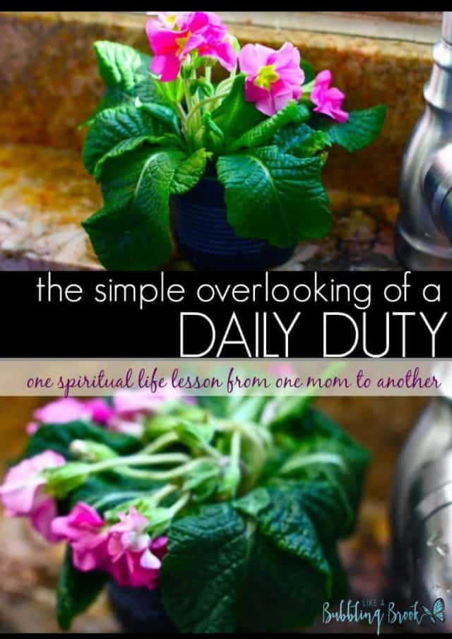 The Simple Overlooking of a Daily Duty