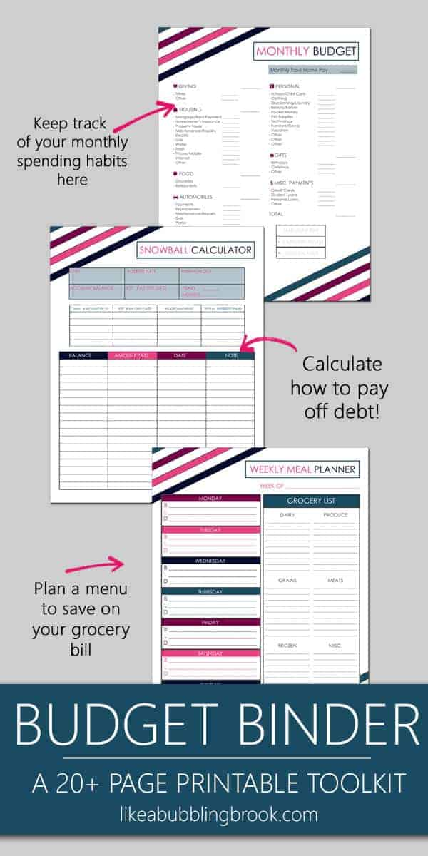 Another Inspired by Dave Ramsey printable budget binder
