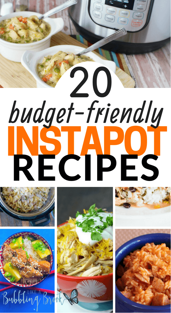 20 Budget Instapot Recipes That Your Family Will Love To Have For Dinner