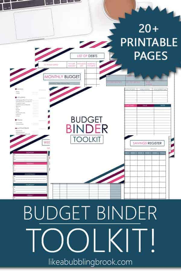 graphic relating to Printable Budget Binder named Best Printable Finances Binder Toolkit in just Berry Stripe