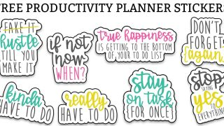 Sarcastic Productivity Planner Stickers – Funny To Do Planner Stickers