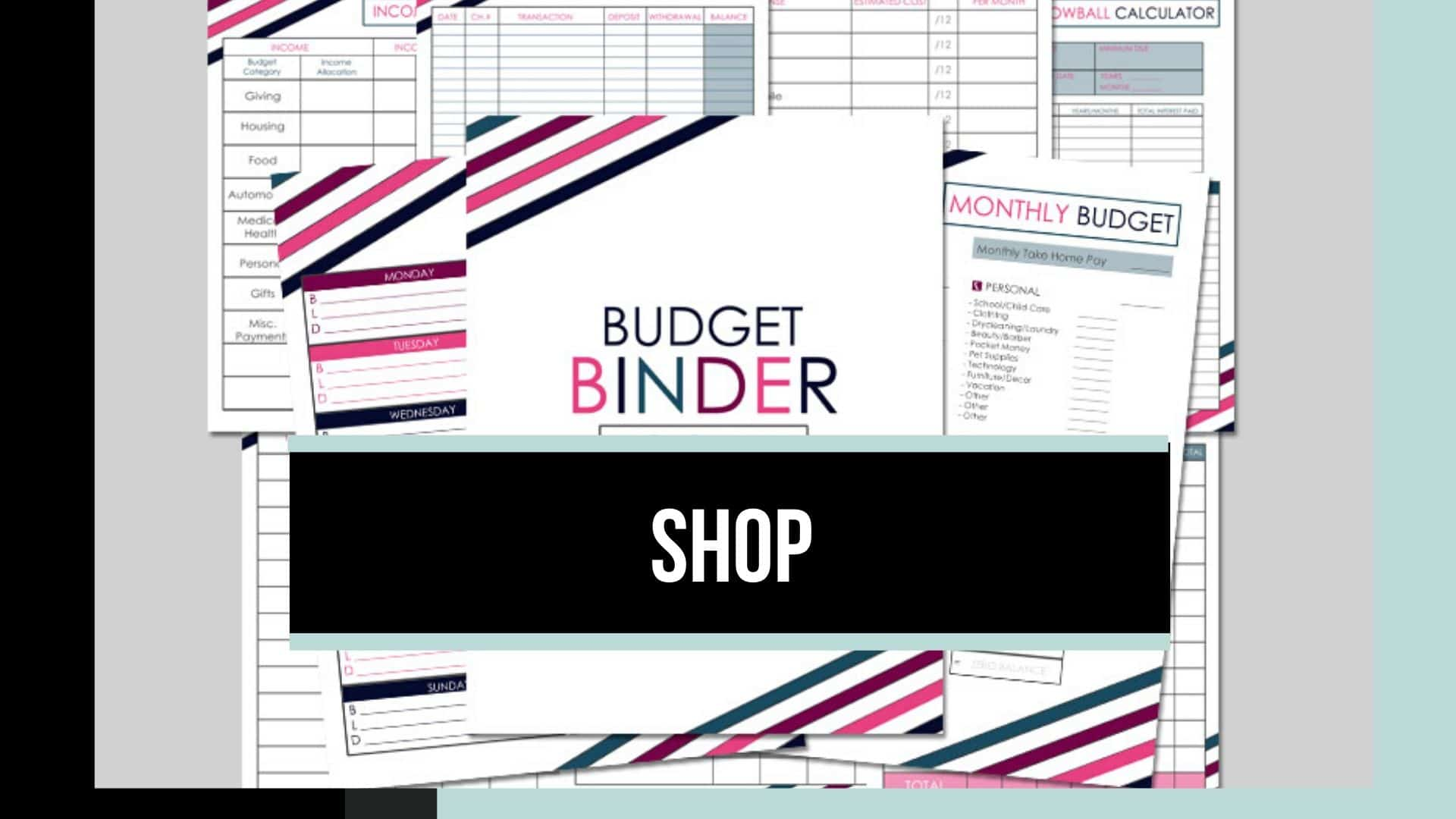 Shop our budgeting printables