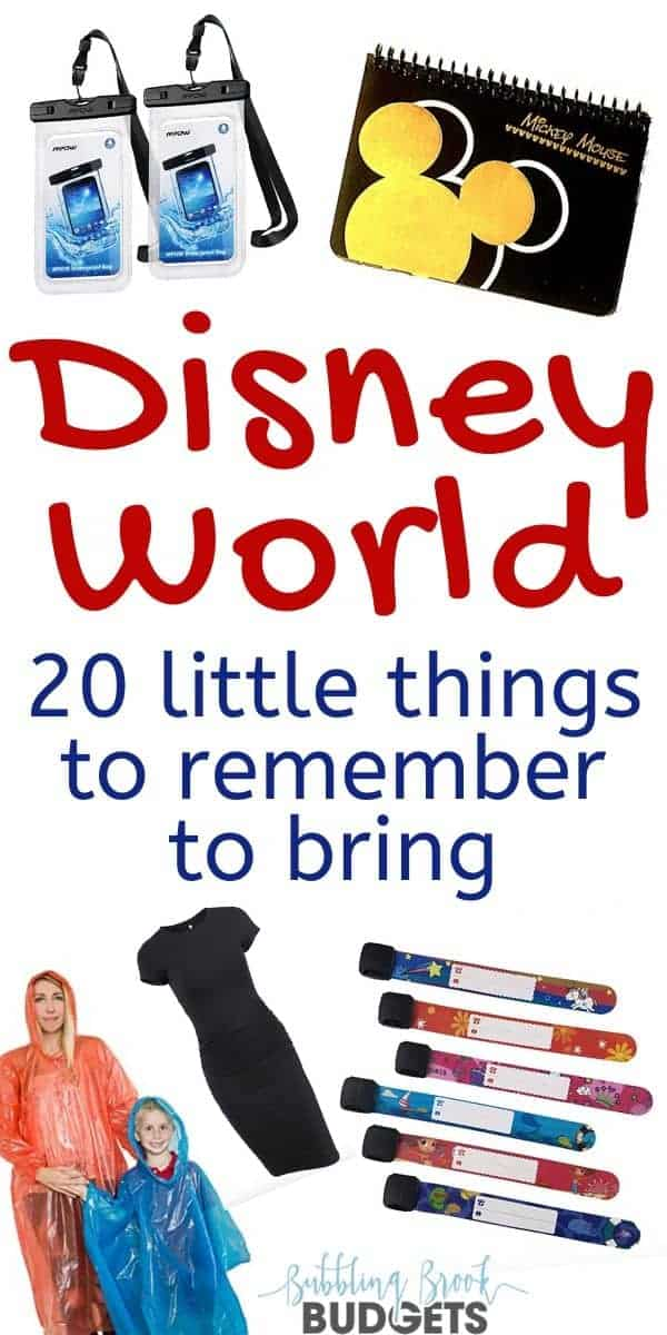 Things to take to Disney World - pin for pinterest