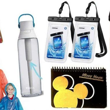 Assortment of items to bring to Disney