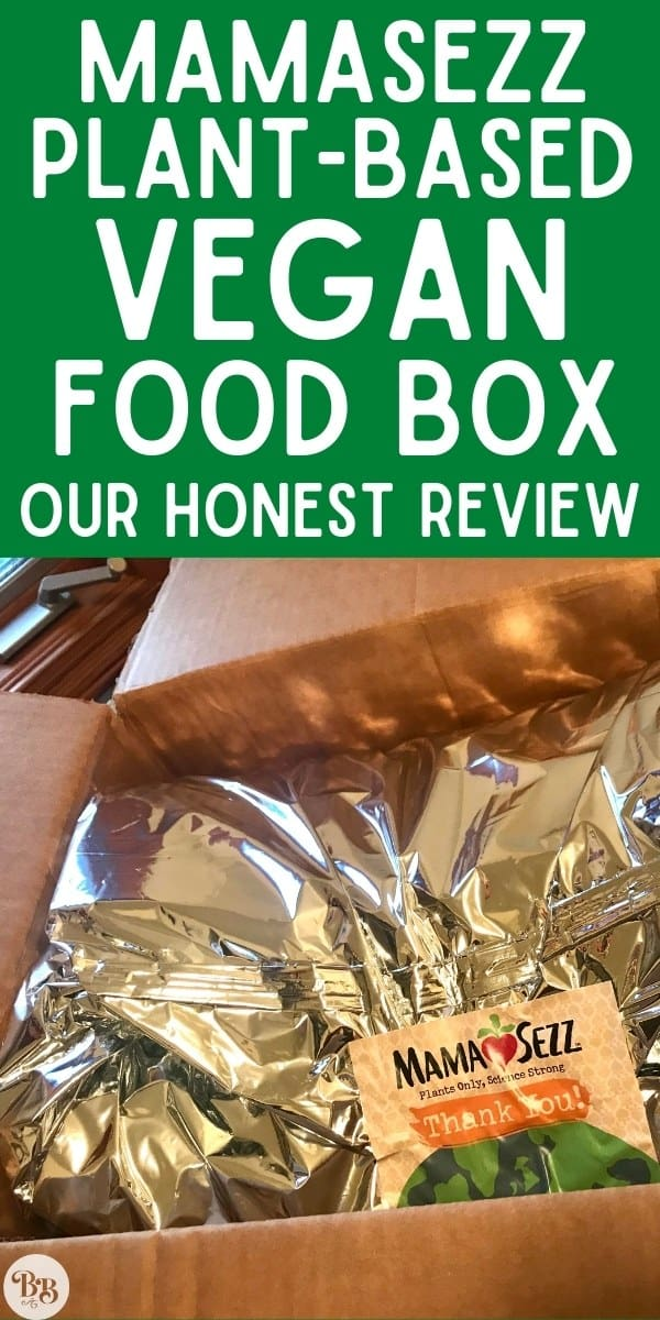 MamaSezz Vegan Food Box Review - pin for Pinterest