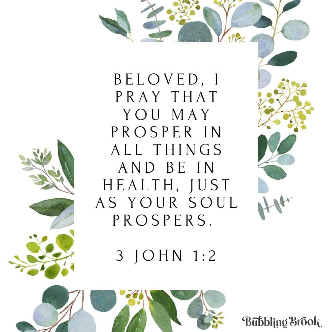 Bible verse - 3 John 1:2