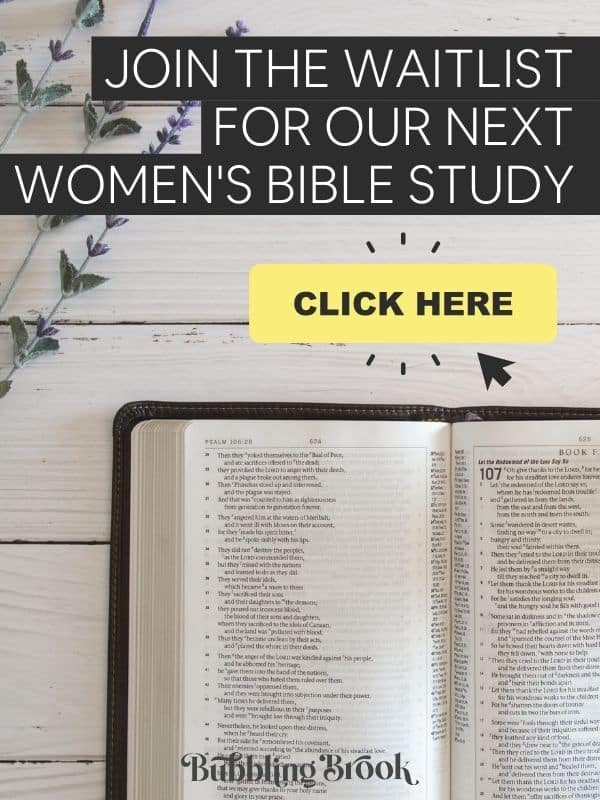 Join the waitlist for our next women's online bible study